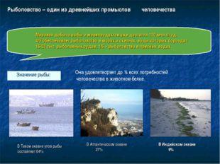 Рыболовство – один из древнейших промыслов человечества Мировая добыча рыбы и