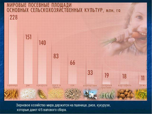 Зерновое хозяйство мира держится на пшенице, рисе, кукурузе, которые дают 4/5...