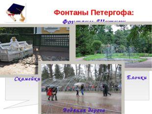 Фонтаны Петергофа: Фонтаны Шутихи Скамейки Елочки Водяная дорога