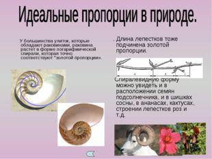 У большинства улиток, которые обладают раковинами, раковина растет в форме л