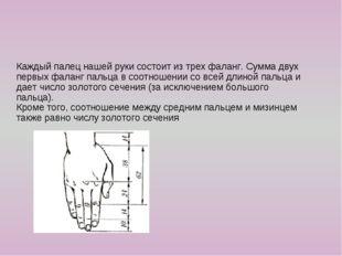 Каждый палец нашей руки состоит из трех фаланг. Сумма двух первых фаланг пал