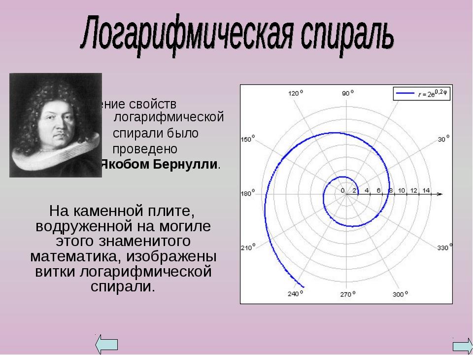 Изучение свойств логарифмической спирали было проведено Якобом Бернулли. На...