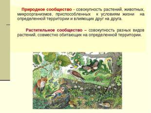 Природное сообщество - совокупность растений, животных, микроорганизмов, при