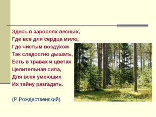 Здесь в зарослях лесных, Где все для сердца мило, Где чистым воздухом Так сла