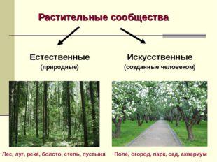 Растительные сообщества Естественные (природные) Искусственные (созданные чел