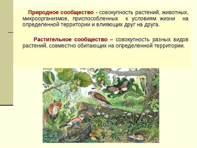 Природное сообщество - совокупность растений, животных, микроорганизмов, при...