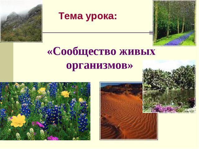 Тема урока: «Сообщество живых организмов»