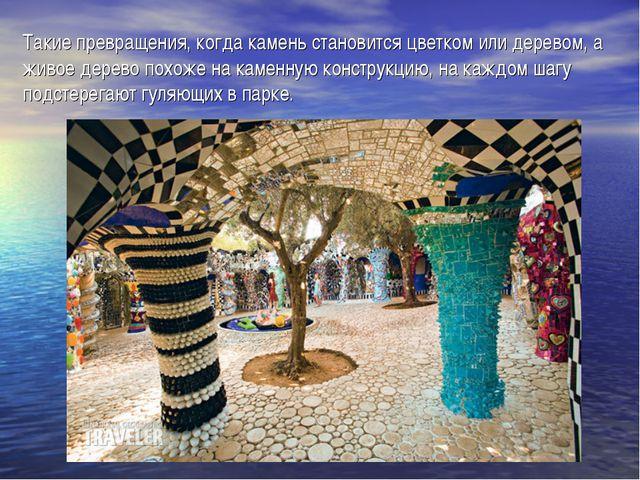 Такие превращения, когда камень становится цветком или деревом, а живое дерев...