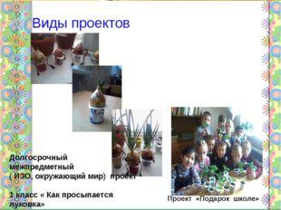 Виды проектов Долгосрочный межпредметный ( ИЗО, окружающий мир) проект 1 кла