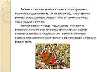Бабочки - всем известные насекомые, которые привлекают особенно большое