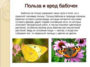 Польза и вред бабочек Бабочки не только украшают наши луга и поля, но и при