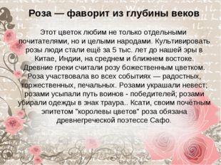 Роза — фаворит из глубины веков Этот цветок любим не только отдельными почит