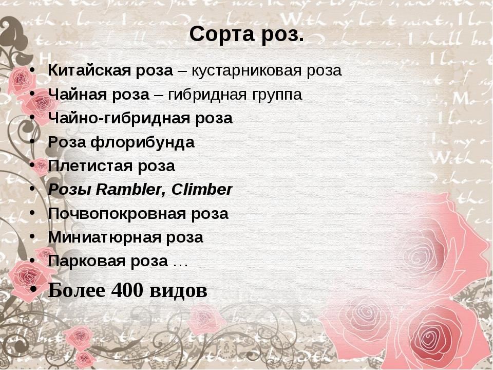 Сорта роз. Китайская роза – кустарниковая роза Чайная роза – гибридная группа...