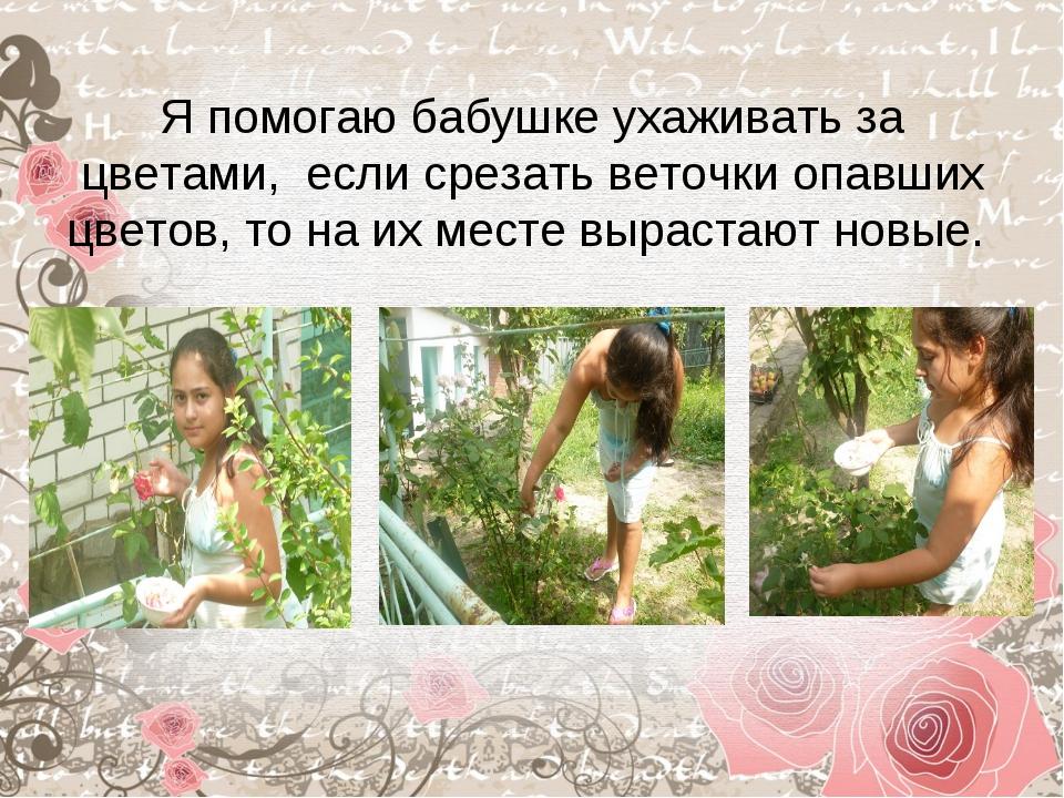 Я помогаю бабушке ухаживать за цветами, если срезать веточки опавших цветов,...