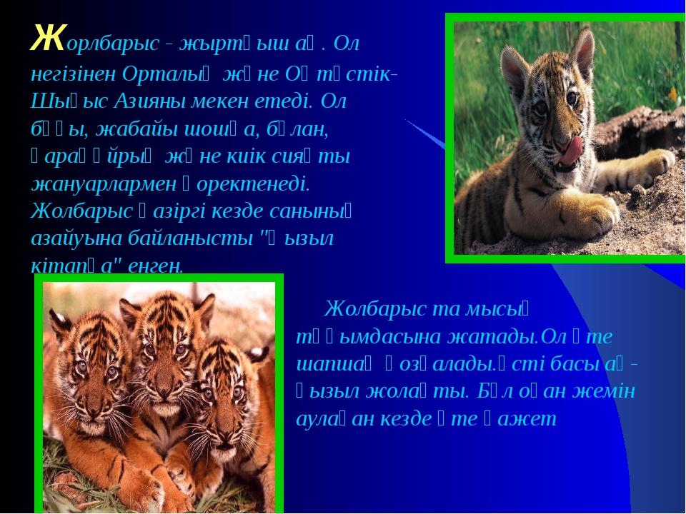 Жорлбарыс - жыртқыш аң. Ол негізінен Орталық және Оңтүстік-Шығыс Азияны мекен...