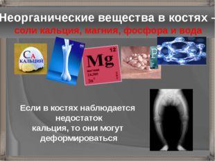 Неорганические вещества в костях – соли кальция, магния, фосфора и вода Если