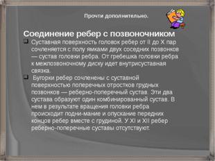 Соединение ребер с позвоночником Суставная поверхность головок ребер от II до