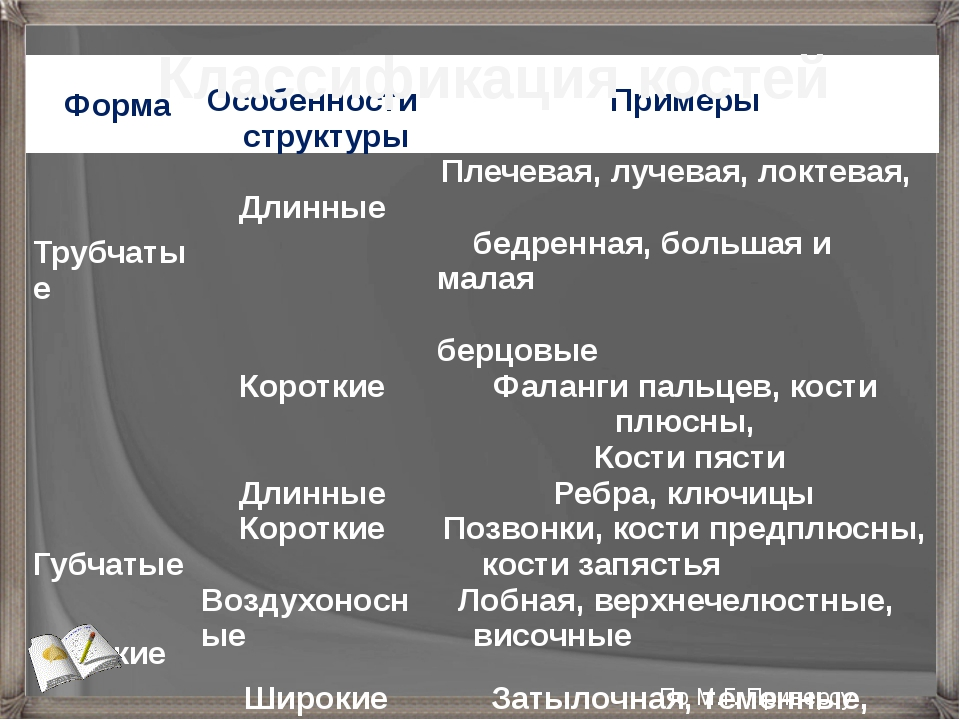 Классификация костей По М.Г. Приверсу Форма Особенности структуры Примеры Тру...