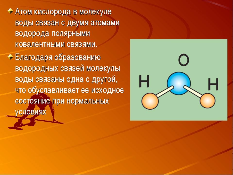 Атом кислорода в молекуле воды связан с двумя атомами водорода полярными кова...