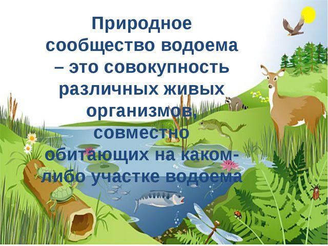 Природное сообщество водоема – это совокупность различных живых организмов, с...