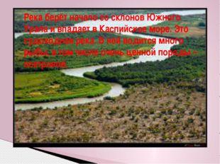 Река берёт начало со склонов Южного Урала и впадает в Каспийское море. Это су