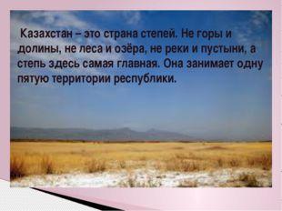 Казахстан – это страна степей. Не горы и долины, не леса и озёра, не реки и