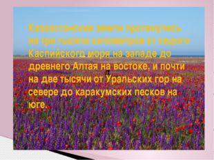 Казахстанские земли протянулись на три тысячи километров от седого Каспийског