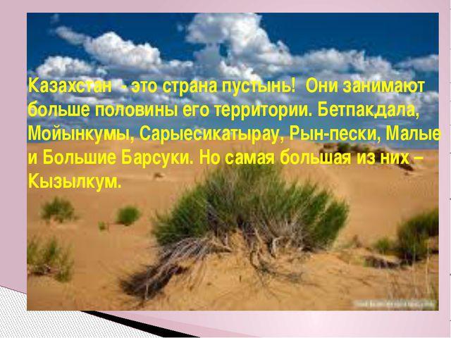 Казахстан - это страна пустынь! Они занимают больше половины его территории....