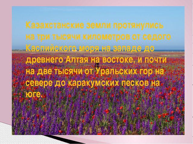 Казахстанские земли протянулись на три тысячи километров от седого Каспийског...