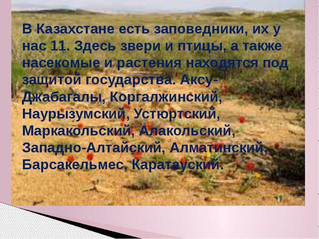 В Казахстане есть заповедники, их у нас 11. Здесь звери и птицы, а также насе...