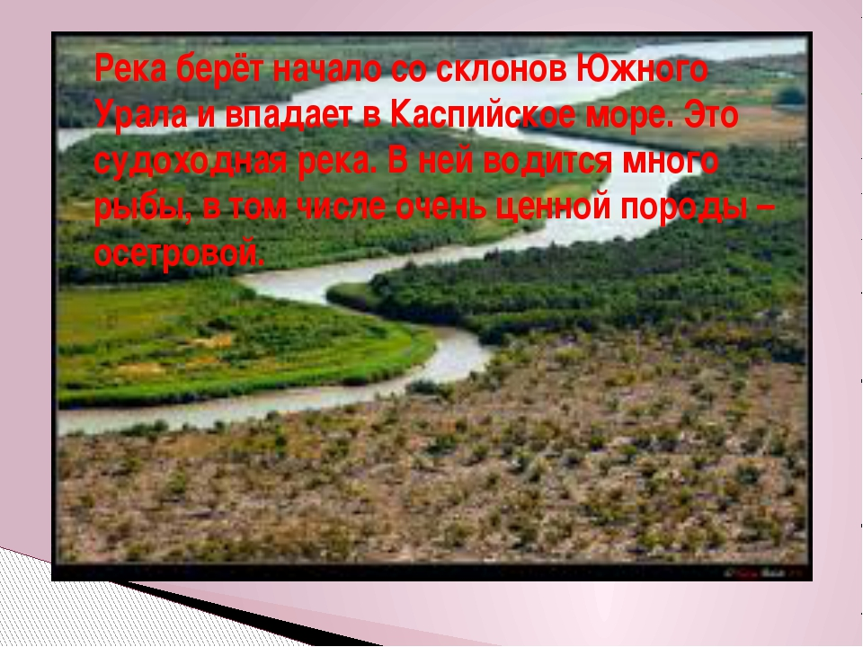 Река берёт начало со склонов Южного Урала и впадает в Каспийское море. Это су...