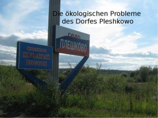 Die ökologischen Probleme des Dorfes Pleshkowo .