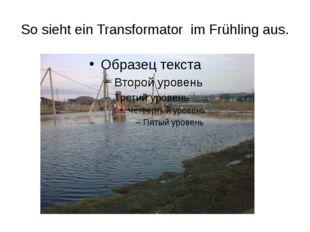 So sieht ein Transformator im Frühling aus.