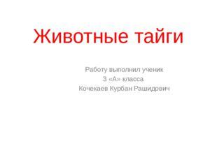 Животные тайги Работу выполнил ученик 3 «А» класса Кочекаев Курбан Рашидович