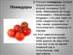 Помидоры В Россию помидоры попали предположительно во второй половине XVIII в