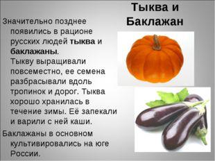 Тыква и Баклажан Значительно позднее появились в рационе русских людей тыква