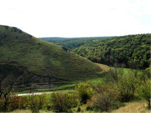 Рельеф Поверхность Молдавии представляет холмистую равнину, расчлененную река