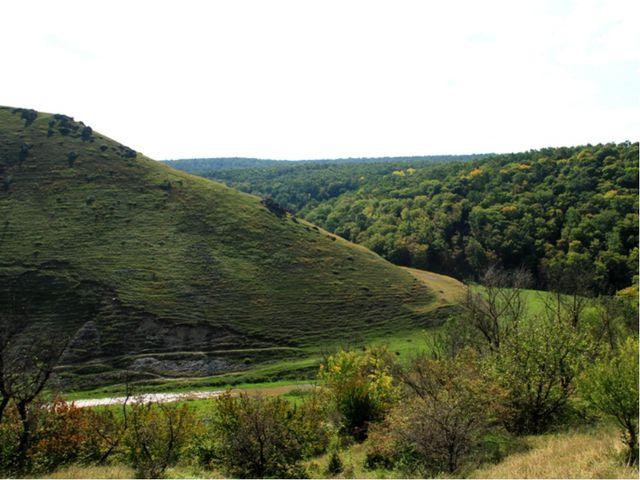 Рельеф Поверхность Молдавии представляет холмистую равнину, расчлененную река...