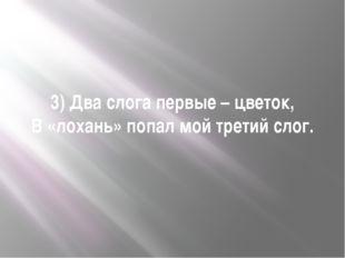 3) Два слога первые – цветок, В «лохань» попал мой третий слог.