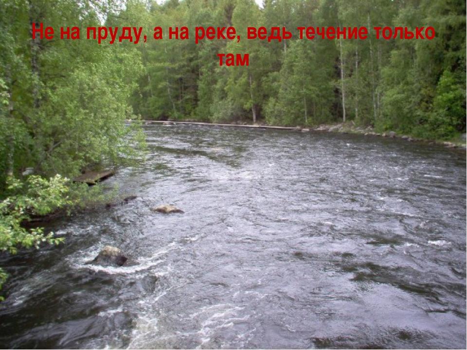 Не на пруду, а на реке, ведь течение только там