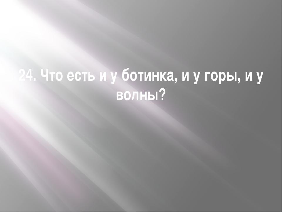24. Что есть и у ботинка, и у горы, и у волны?