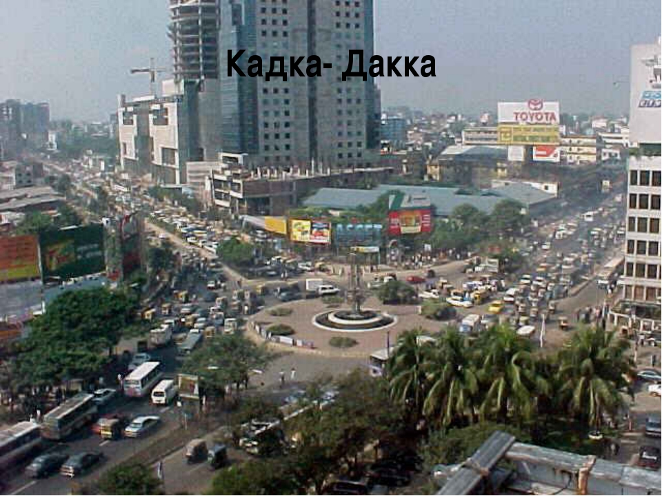 Кадка- Дакка