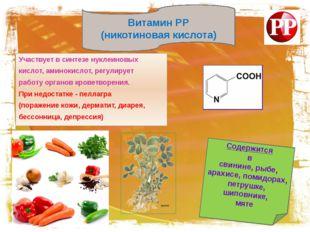 Участвует в синтезе нуклеиновых кислот, аминокислот, регулирует работу орган