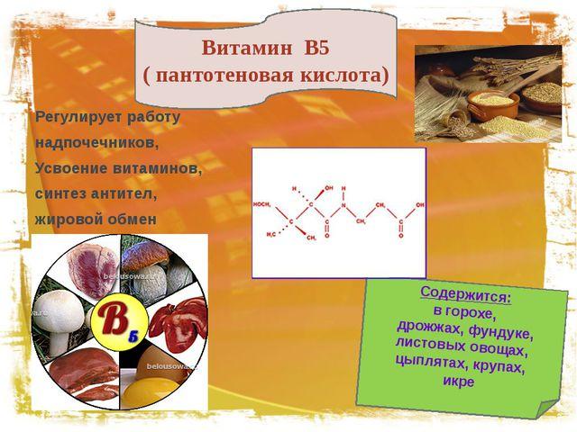 Регулирует работу надпочечников, Усвоение витаминов, синтез антител, жировой...