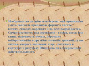 Изображал ли он дубы или березы, они принимали у него донельзя правдивые фор