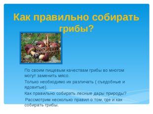 Как правильно собирать грибы? По своим пищевым качествам грибы во многом могу