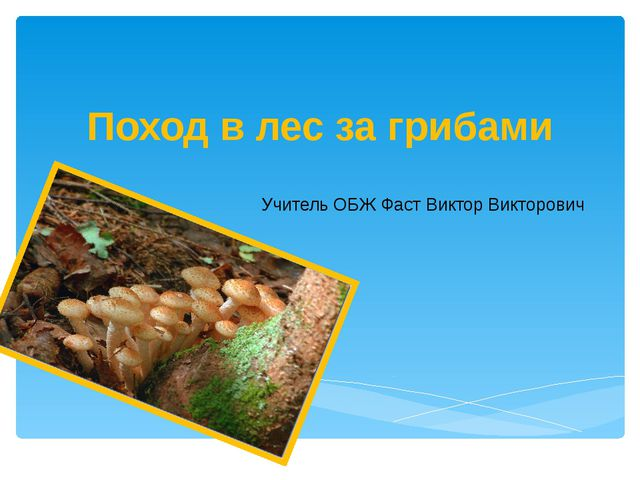 Поход в лес за грибами Учитель ОБЖ Фаст Виктор Викторович