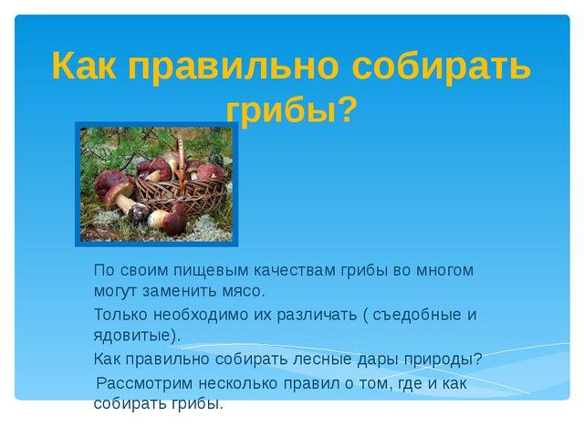 Как правильно собирать грибы? По своим пищевым качествам грибы во многом могу...