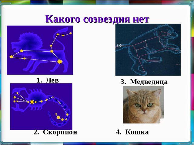 Какого созвездия нет 1. Лев 3. Медведица 4. Кошка 2. Скорпион