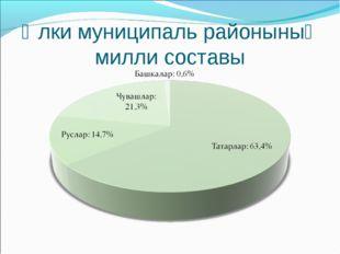 Әлки муниципаль районының милли составы